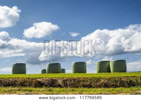 Wrapped Bales In Midi-pyrenees (france)