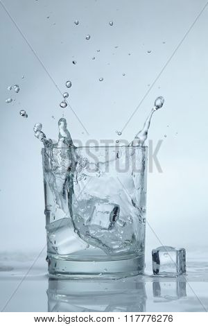 ice cubes in the water