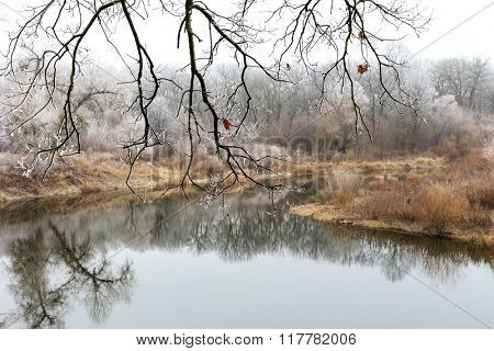 Frozen leafless twig above river
