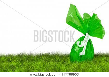 Green Easter Egg hunt on grass on white background