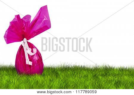 Purple Easter Egg hunt on grass on white background