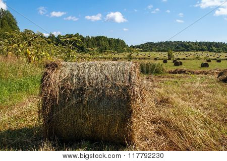 Haystack in the field in autumn.