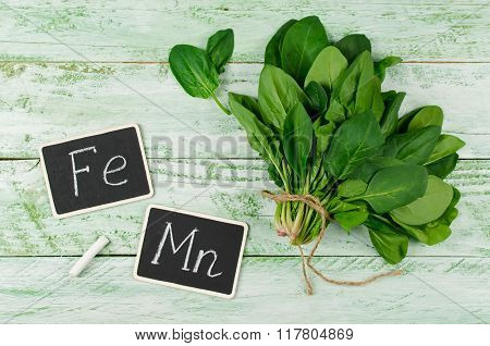 Spinach Rich In Vitamin C, A, Manganese And Iron