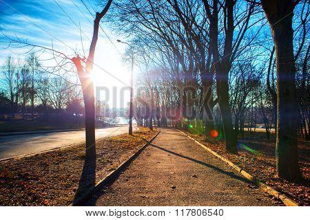 orthros road anchorwoman through a park