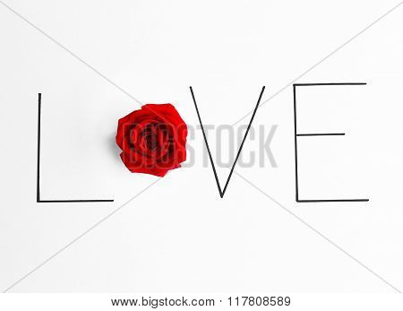 Inscription love with red rose on white background