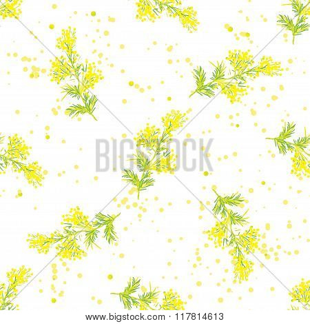 Seamless spring pattern with sprig of mimosa