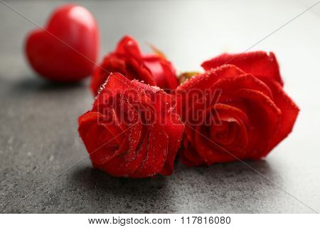 Beautiful red roses on dark gray background