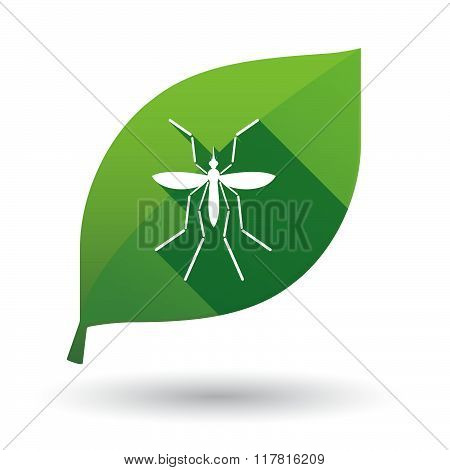 Zika Virus Bearer Mosquito  In A Green Leaf