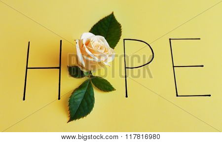Inscription hope with beige rose on green background