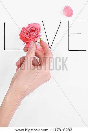 Inscription love with pink rose and hand on white background