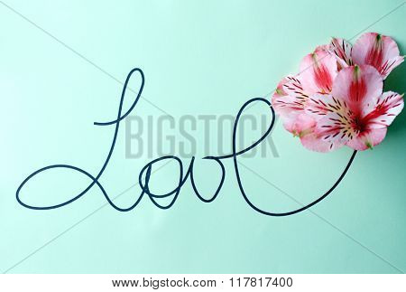 Inscription love with pink flowers on green background
