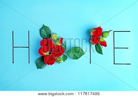 Inscription hope with pink roses on blue background