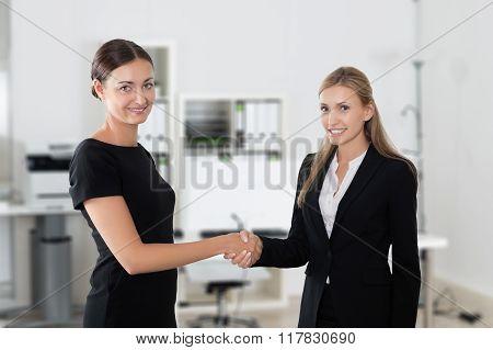 Business Women Shaking Hands Making A Deal