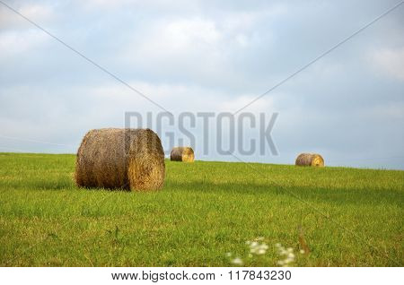 round hay bales in a field of green grass with blue sky and clouds