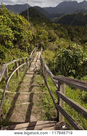 The scenic Tet Paul Nature Trail in St. Lucia is a popular attraction.