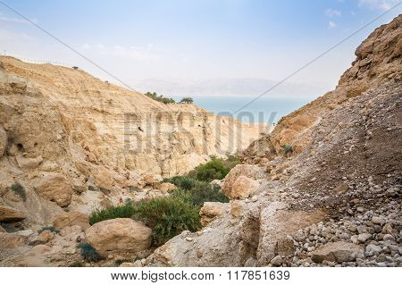 Canyon In En Gedi Nature Reserve And National Park