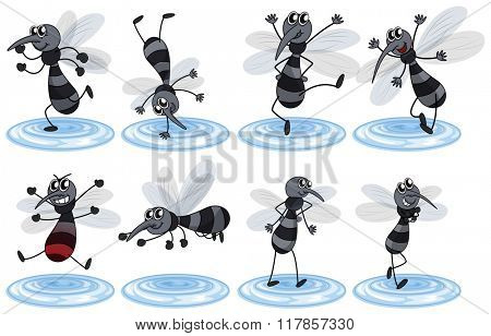 Mosquitos in different actions illustration