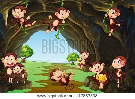 Monkeys living in the cave illustration