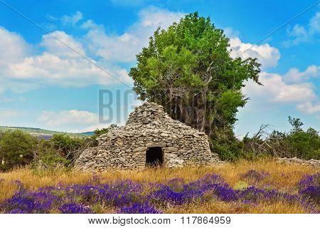 Stone borie in the lavender field