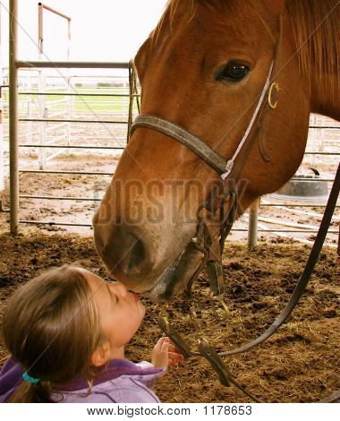 A Goodbye Kiss For My Horse