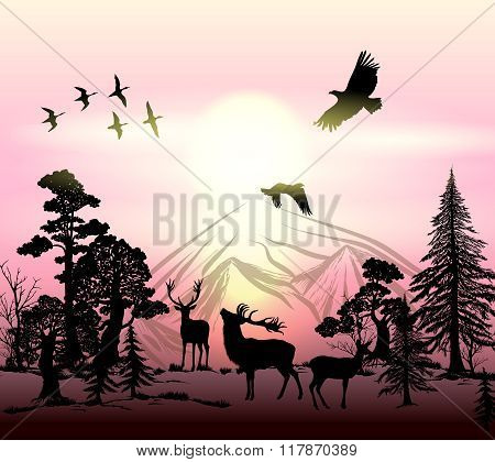 Outdoor Vector Background With Silhouettes Of Animals And Trees