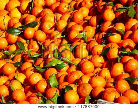 Mandarin citrus fruit background
