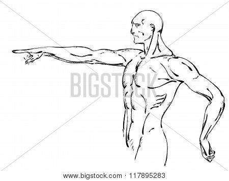 bodybuilder. strong muscular man. athlete or fighter