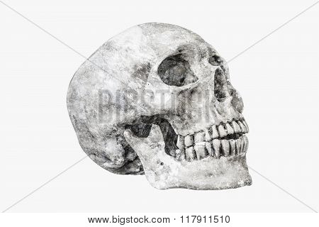 Rock Human Skull On Isolated,clipping Path
