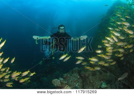 Scuba diver swims though school of snapper fish