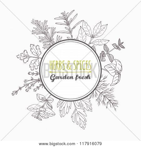 Circle label with hand drawn herbs and spices. Outline style seasonings
