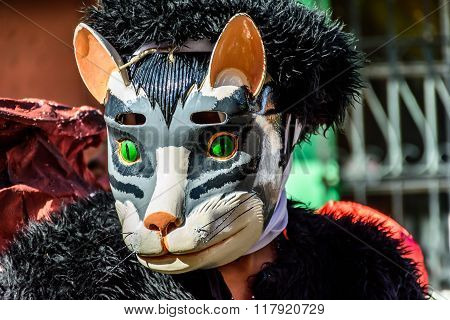 Local With Animal Mask, Cuidad Vieja, Guatemala