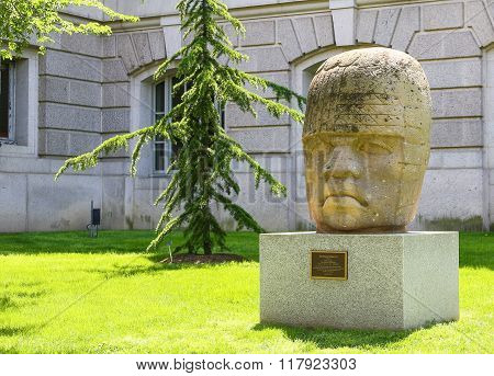 Colossal Head Replica