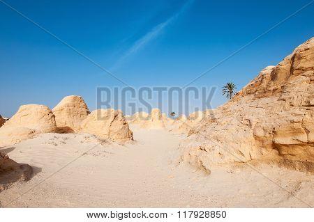 Tunisia Desert Dunes