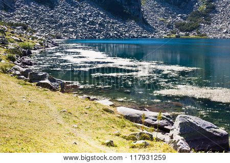 Beautiful Lake in the mountains near Bansko, Bulgaria and Water crowfoot