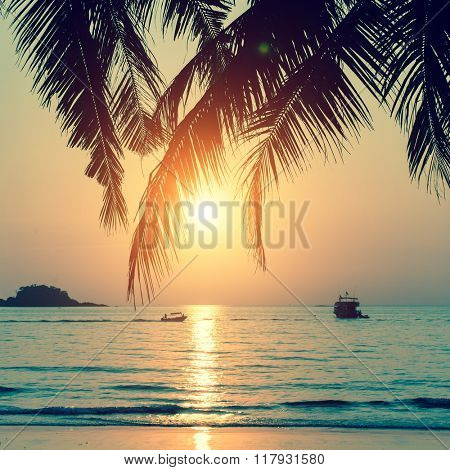 Tropical beach during a beautiful sunset.
