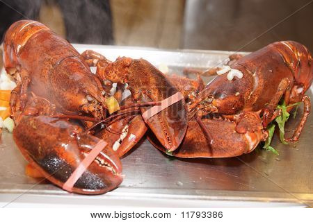 Two Lobsters Just Boiled With Herbs