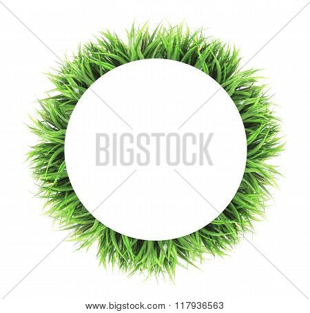 circle grass frame isolated on white background