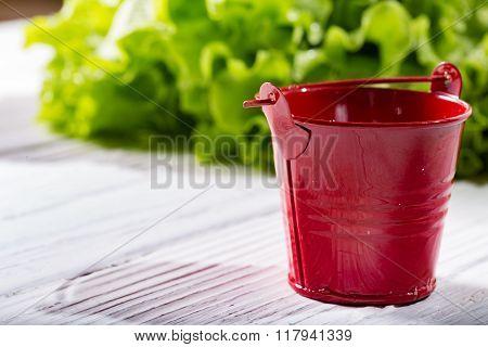 Garden Bucket On White Boards Against Greens