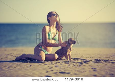 Young woman playing with dog pet on beach during sunrise or sunset.Girl and dog having fun on seasid