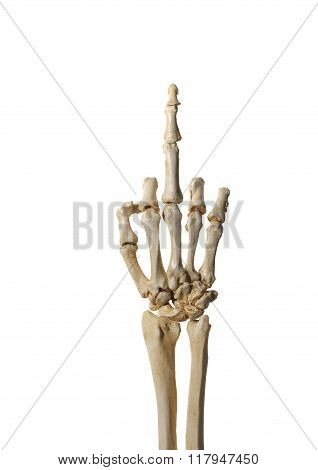 Skeleton Hand Flipping the Bird
