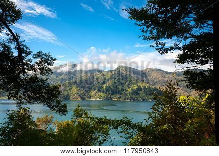 Marlborough Sounds as seen from the Queen Charlotte Track in South Island New Zealand