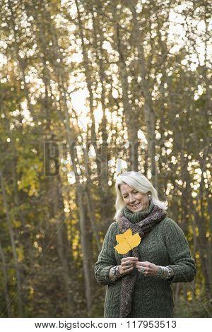 Senior woman holding a leaf
