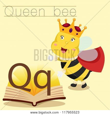 Illustrator of q for quee bee vocabulary