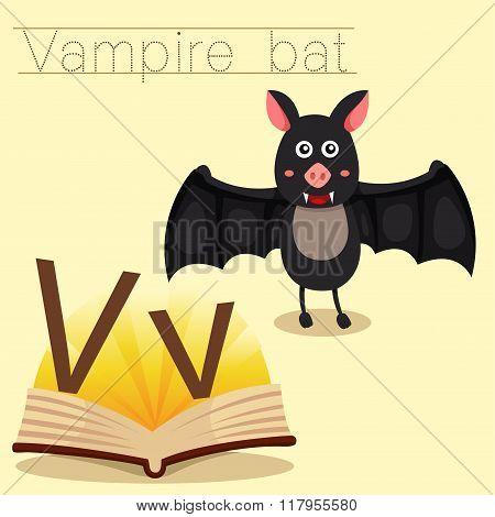 Illustrator of v for vampire bat vocabulary