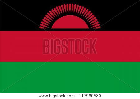 Standard Proportions For Malawi Flag