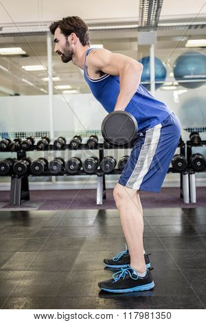 Muscular man lifting barbell at the gym