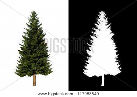 Decorative evergreen tree 3