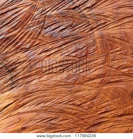 Surface Wood Log Texture Background