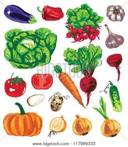 Colored Vegetables On White Background