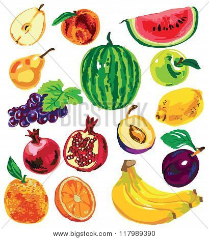 Fruit Color On White Background